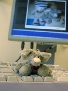 Mr. Ganesh beim Blogschauen :)