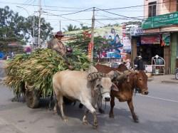 20 Meter weiter: Klassischer Transport in Kon Tum