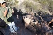 Jolanda erklärt ein paar Fossilien, die am Wegesrand rumliegen