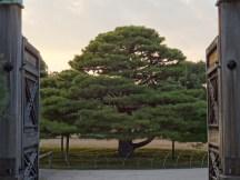 Entrance to Kyōto castle gardens.