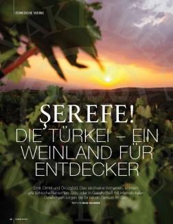 Türkei_Wein