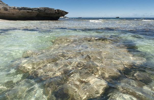 Die Porpoise Bay von Rottnest Island
