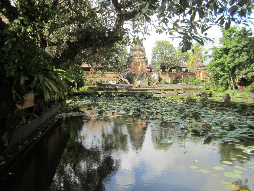 Lotusteich in Ubud