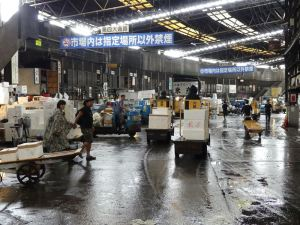 Betriebsamkeit auf dem Fischmarkt