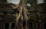 Mystieke sferen, overwoekerde tempels en drijvende dorpen in het groene Cambodja
