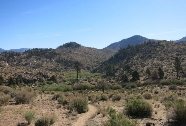 Mojave woestijn PCT