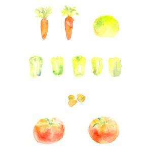 透明水彩で描いた野菜のイラスト にんじん ピーマン レタス トマト じゃがいも イラスト ライフスタイル 料理 野菜 食べ物イラスト アナログイラスト 広告 web  イラストレーター イラストレーション おしゃれ illustration fashionillustration woman illustrator イラストレーターreism・i(リズム)