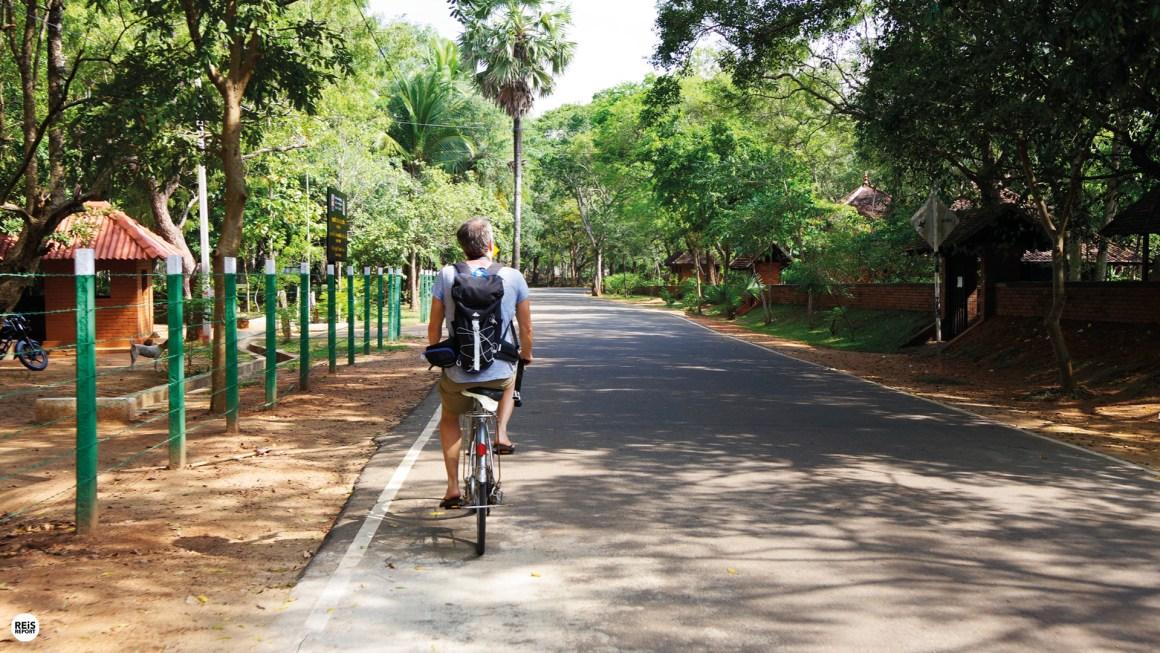 Anuradhapura fietsen