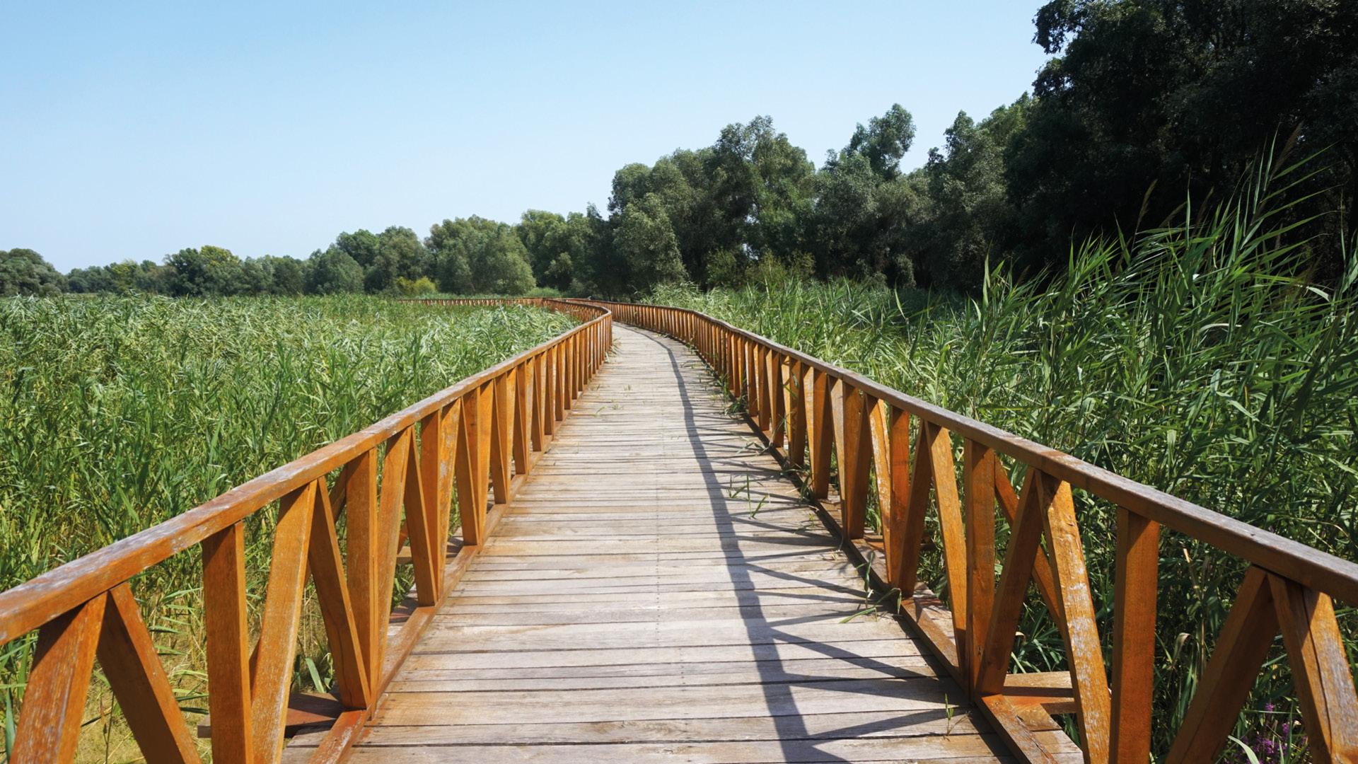 Kopački Rit kroatie nationaal park