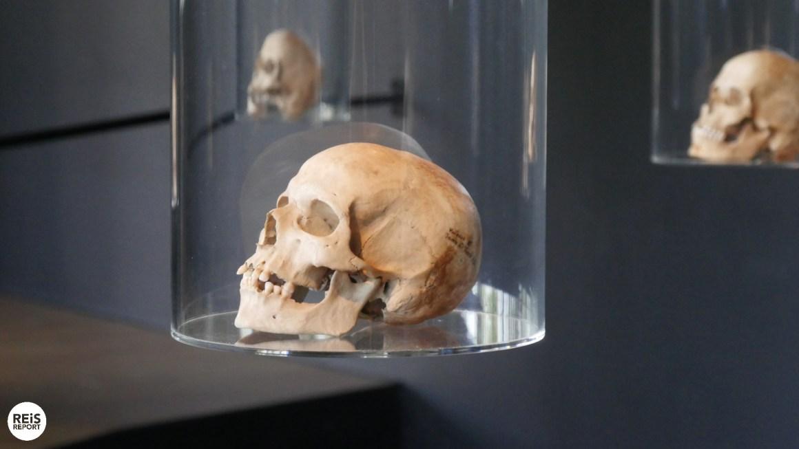 museum kroatie vučedolske kulture