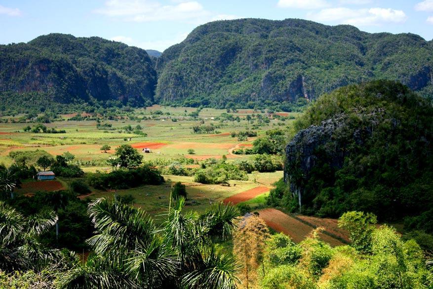 In de streek van Pinar del Río overheerst de natuur © Pixabay