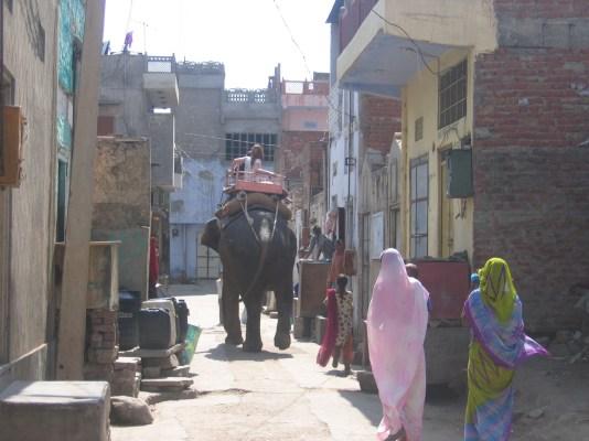 Intian matka 15.2 - 6.3.2008 498