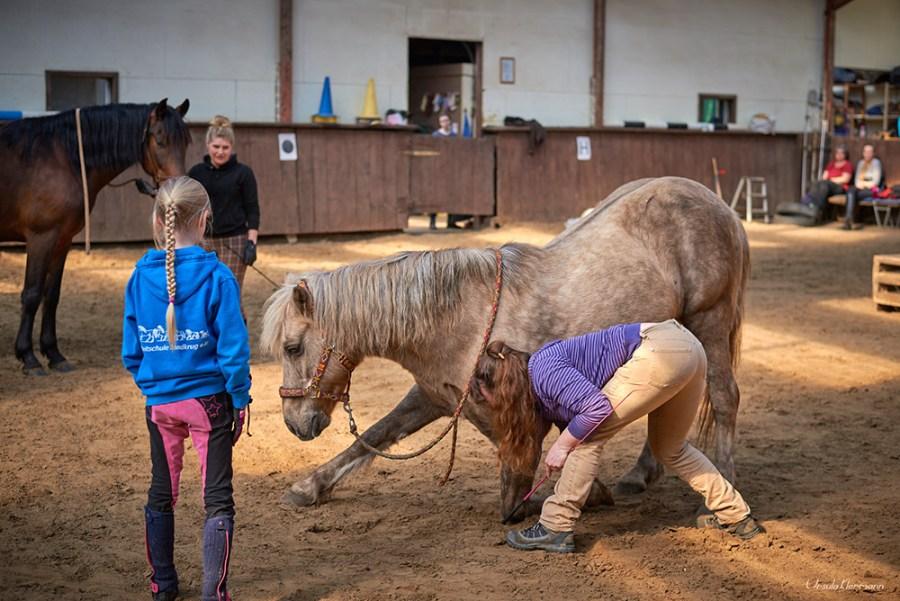 Zirkus-Kurs Foto: Ursula Klarmann