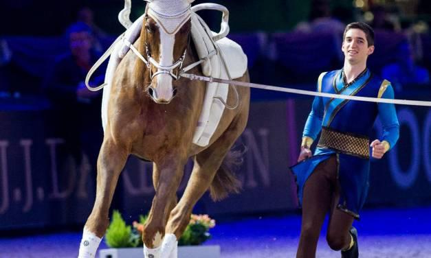 Partner Pferd 2017: Grandioser Erfolg für  deutsche Voltigierer
