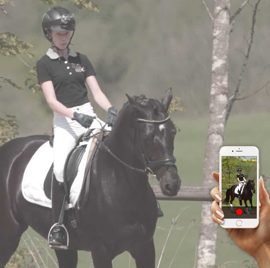 black horse with REITTV video analysis