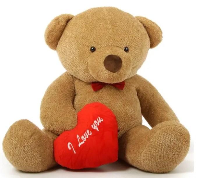 teddy-bear-bulu-tipis