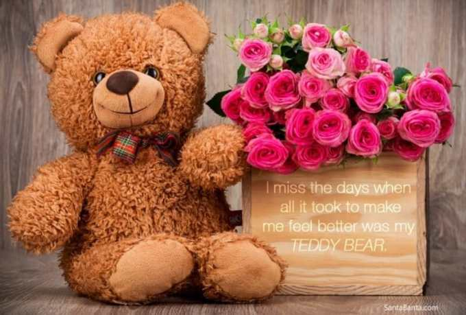 teddy-bear-cokelat