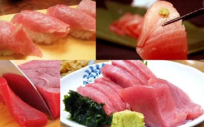 manfaat ikan tuna sirip biru