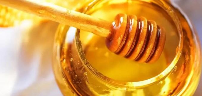 madu yang asli tidak disukai semut
