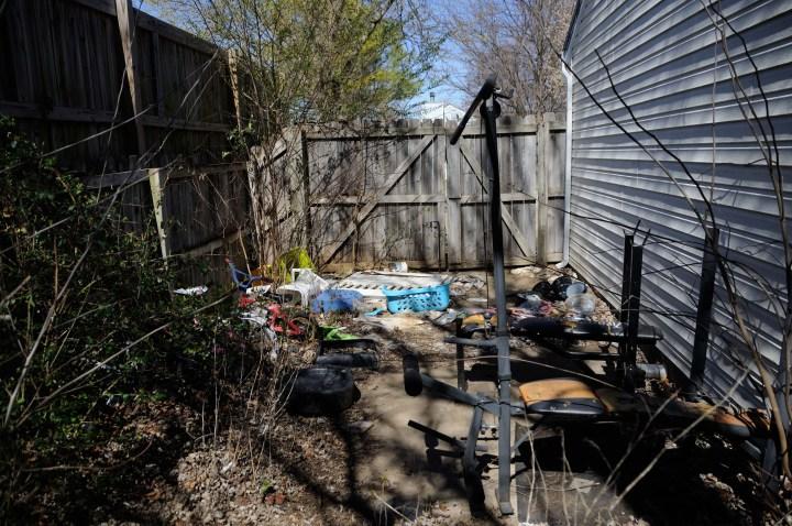 backyard 4 before