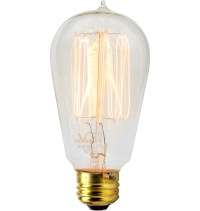 60W Squirrel-cage Tungsten-filament Bulb | Rejuvenation