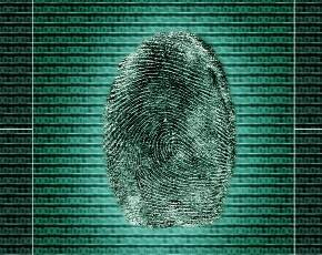 Secure Your Firm With a Cheap Biometric Solution…