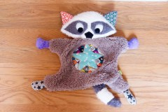 Flying Raccoon 2 face