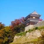 上田城の紅葉2017!見頃時期やけやき並木紅葉まつりの日程は?