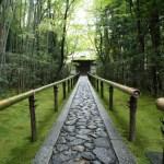 とんちで有名な一休さんは実在の禅僧!わび茶の創始者・村田珠光は弟子だった?