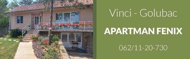 Apartman Fenix - Vinci