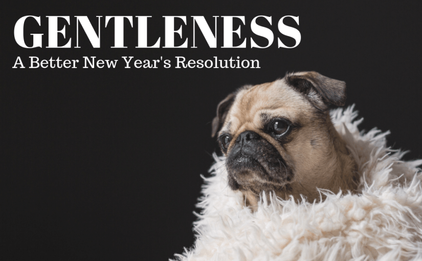 073 Personal Growth: A Better New Year's Resolution – Gentleness