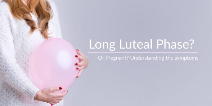 LUTEAL PHASE,