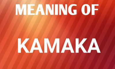 Kamaka Name Meaning and Origin