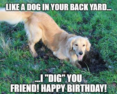 birthday wish for dog image5