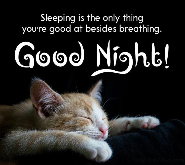 funny good night wishes22