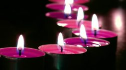 stock-footage-warm-romantic-pink-candlelight-against-black-background-flickering-candles-grouped-in-a-curved