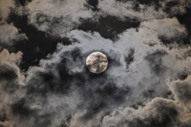 luna photo