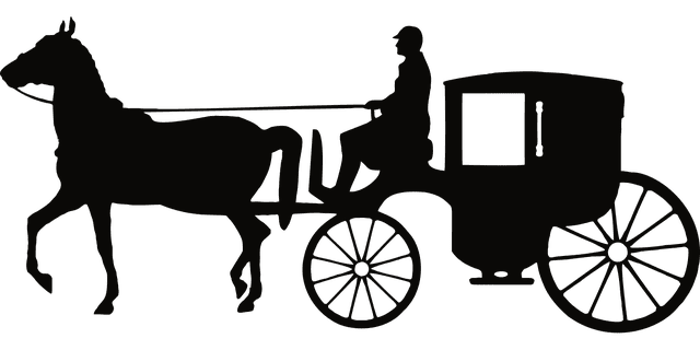 carriage photo