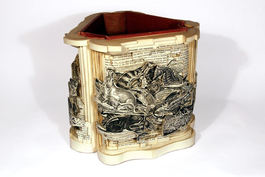 brian dettmer, artista, papel, carvado