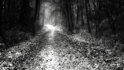 La carretera: hambre y frío