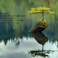 Profound Peace