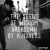 Seeds of Advice