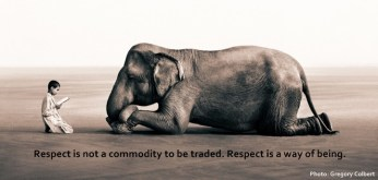 295 Relax and Succeed - Respect is not a commodity