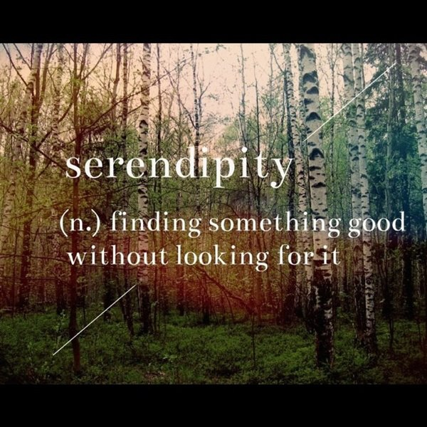 379 Relax and Succeed - Serendipity finding something good