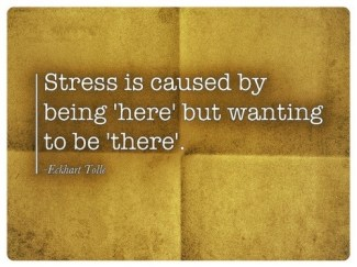 398 Relax and Succeed - Stress is caused by