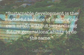 484 Relax and Succeed - Sustainable development is the masterful balance
