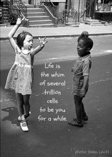524 Relax and Succeed - Life is the whim