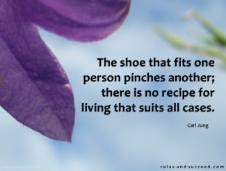625 Relax and Succeed - The shoe that fits one person