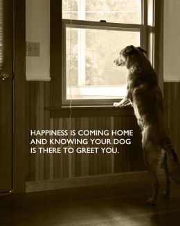 866 Relax and Succeed - Happiness is coming home