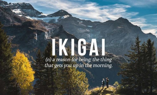 960 Relax and Succeed - Ikigai The reason to get up in the morning